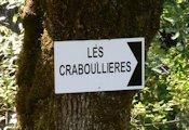Crabouliières